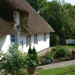 De voor- en nadelen van een rieten dak